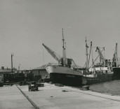 """Photograph of ships """"Fivelstad""""and """"Parnass"""", Blyth Harbour, Blyth, Northumberland."""