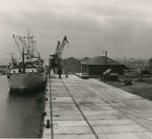 """Photograph showing ship """"Frederick T. Everard"""", Blyth Harbour, Blyth, Northumberland."""