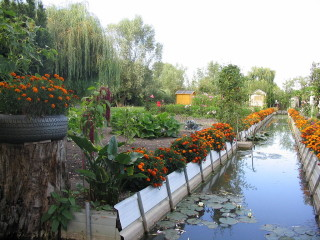 Allotment with irrigation channel | John Smith (photographer)