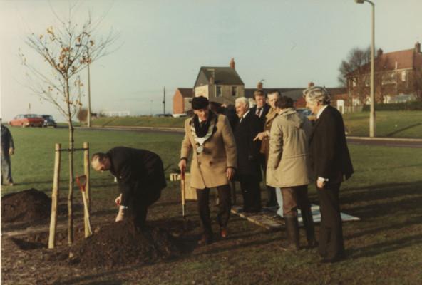 Photograph of tree planting ceremony