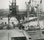 Photograph of loading of a ship, dockside, Blyth Harbour, Blyth, Northumberland